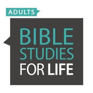 BSFL Adults Logo